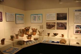 (1)歴史遺産や自然環境の保全と活用に関する事業