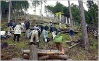 「桐生の自然保護や環境美化に関する取組」