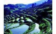 ④ふるさと新潟の中山間地域を守り活性化を図ります