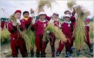 2. ふるさと阿賀野市の文化と子どもたちを守り育てる