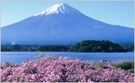 富士山の保全、環境美化に関する取り組み
