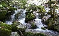 1 ふるさとの水と空気を育むまちづくり