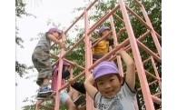5.地域福祉を推進する事業