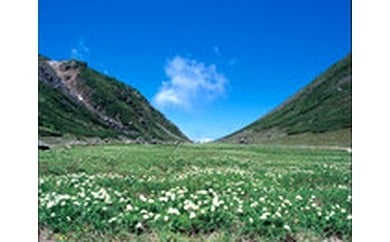 4 ふるさとのたいせつな自然応援 自然・景観・環境
