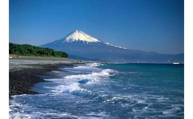 4.世界遺産富士山の保全管理