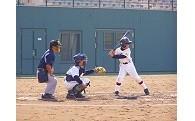 教育またはスポーツ・文化の振興に関する事業