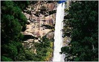 那智の滝源流水資源保全事業