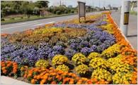 ④緑と花の整備によるまちづくり