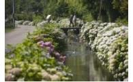 豊かな自然環境保全に関する事業