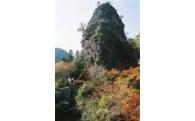 自然環境・景観の保全