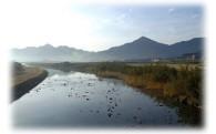 (3)自然・環境の保全