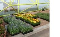 自然環境の保全及び緑化に関する事業
