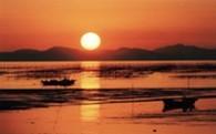 5.自然・環境保全事業(みんなで、ふるさとの海・山ば、守るバイ)