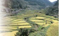 ふるさと「きつき」の環境・景観の保全・文化の継承