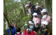 世界自然遺産をはじめとする地域の環境保全に関する事業