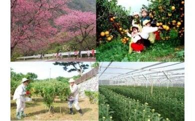 1.産業の振興及び魅力ある観光地づくりに関する事業