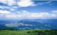 (6)ともに守る自然保護及び森林保全に関する事業