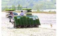 農業振興に関する事業