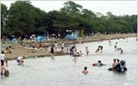 (1)小川原湖を中心とした自然の息吹に満ちた空間を守り、活用するための事業