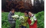 ③観光と連携したブランド農産物づくり
