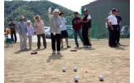 文化・スポーツ活動の支援に関する事業