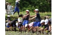 (4)教育・福祉 ・子育て
