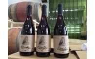 ⑤イイコト・プロジェクト「ひがしかわワイン事業」
