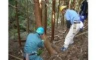 (2)森林農地適正管理基金