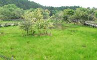 3. 自然環境を守るふるさとづくり