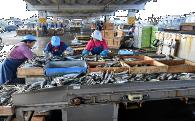 2 地域産業の振興及びその他地域の活性化のための事業