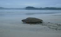 3 自然環境及び地域景観の保全のための事業