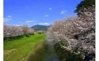 (4)自然の恵みを守り高め、未来に続く農林育成事業