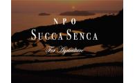 9)NPO法人Succa Senca