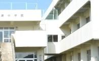 (3)薬科大学誘致及び学校施設整備に関する事業