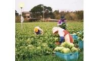 2.地場産業の育成振興事業