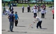 (3)ゲートボール等のスポーツの振興に関する事業