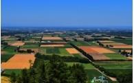 (1)農業・商工業の振興に関する事業