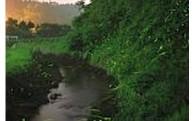 環境の保全及び景観の維持、再生に関する事業