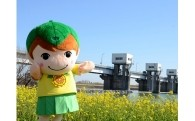 ⑤町のマスコットキャラクター「みどりちゃん」の応援に関する事業