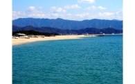 7.わかやまの美しい海づくり