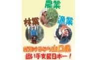 (3) 農林水産業担い手支援日本一の実現