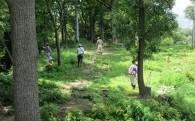 (6)コミュニティ事業①「椿井城跡整備管理組合」