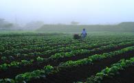 2. 農の都としての農業振興に関する事業
