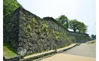 歴史や文化資源を保存・活用するための事業