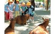 (1)教育環境の充実・文化の振興・子育て支援