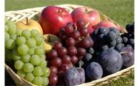 おいし農作物づくり・特産品開発