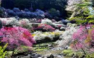 3 自然や景観を守り育てる事業
