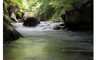 5.三股町が取組む自然・環境保護に関する事業