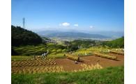 Dコース申し込み いつまでも大切にしたい私の故郷 上田の原風景保全整備事業