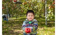 ◆子育て・人材育成・教育(未来を担うりんごっ子たちを応援します)